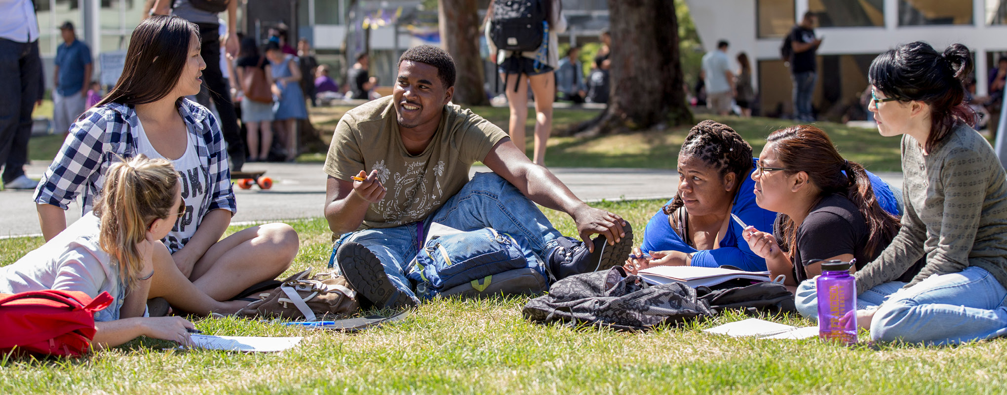Students talking on the grass on SFSU campus